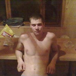 Антон Цвынтарный, 27 лет, Белополье