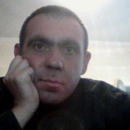 Золтан, 47 лет, Виноградов