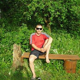 Александр, 45 лет, Краснодар