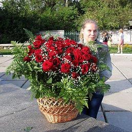 Светлана, 31 год, Горловка