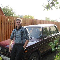 Сергей, 29 лет, Сосновый Бор