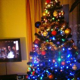 Фото Marcin5665, Лодзь - добавлено 25 декабря 2013