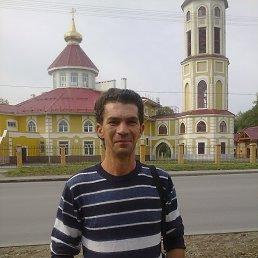 сергей, 41 год, Березники
