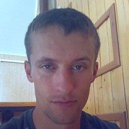 Denis, 29 лет, Ленинградская