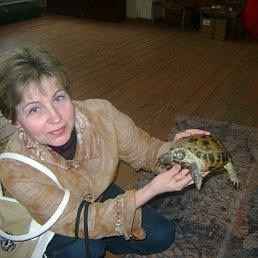 светлана, 48 лет, Сенгилей