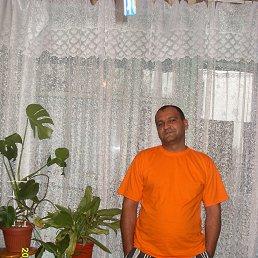 Владимир, 45 лет, Дмитровск