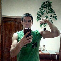 Антон, 26 лет, Червонозаводское