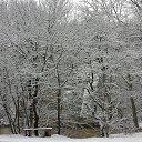 Фото Беатриче, Краснодар, 42 года - добавлено 24 января 2014 в альбом «Зима»