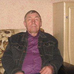 Владислав, 65 лет, Бабаево