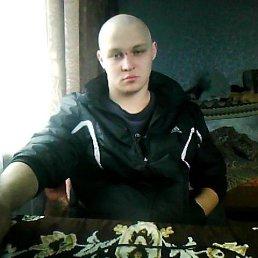 Коля, 25 лет, Червонозаводское
