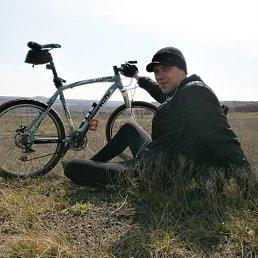 Фото Андрей, Энгельс, 32 года - добавлено 2 августа 2014