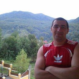 Алексей Токарский, 41 год, Кременец