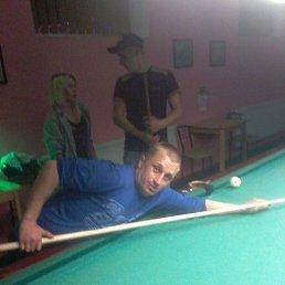 Артём, 34 года, Васильевка