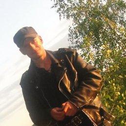 Андрей, 41 год, Починок