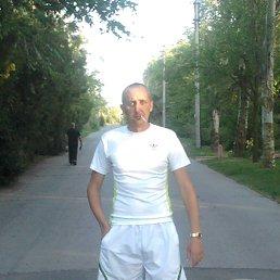 Игорь, 36 лет, Новоград-Волынский