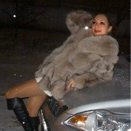 Алиса, 34 года, Ярославль