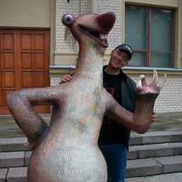 Сергей, 45 лет, Кесова Гора