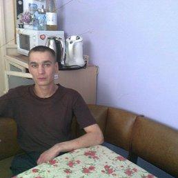Роман, 36 лет, Владивосток