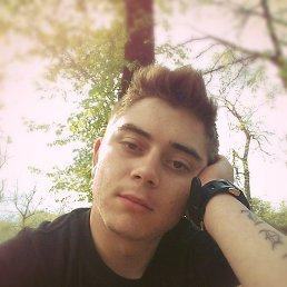 Влад, 25 лет, Крыжополь
