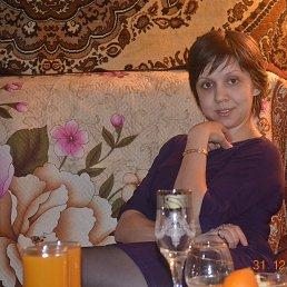 лисенок, 36 лет, Бологое