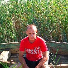 андрей, 36 лет, Гуково