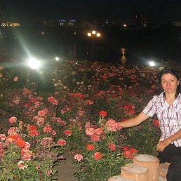 галка, 44 года, Кузнецовск