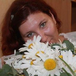 Кристина, 30 лет, Шебекино