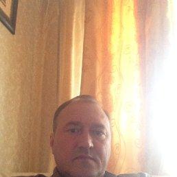 игорь, 53 года, Ладва