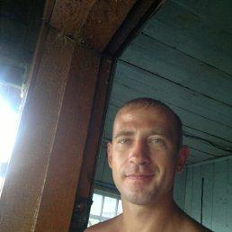 Андрей, 34 года, Осинники