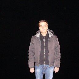 Сергей, 37 лет, Путивль