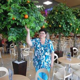 Людмила, 61 год, Навля
