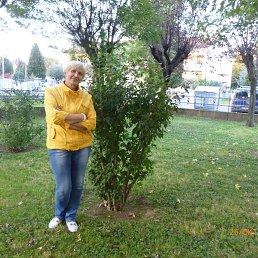 Ольга, 61 год, Славута