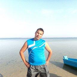 Евгений, 32 года, Бородянка