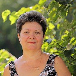 Галина, 62 года, Порхов