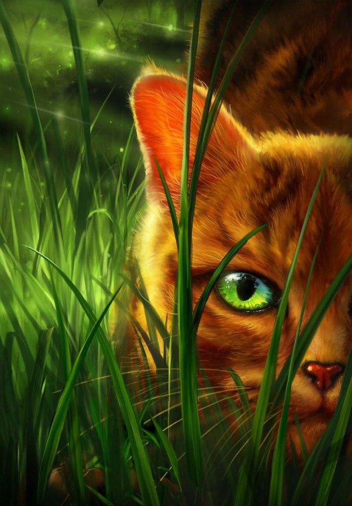 картинки рыжего кота с зелеными глазами мультяшного воссоздания образа она