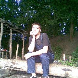 shurik, 31 год, Лысянка