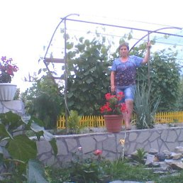 Галина, 36 лет, Курган