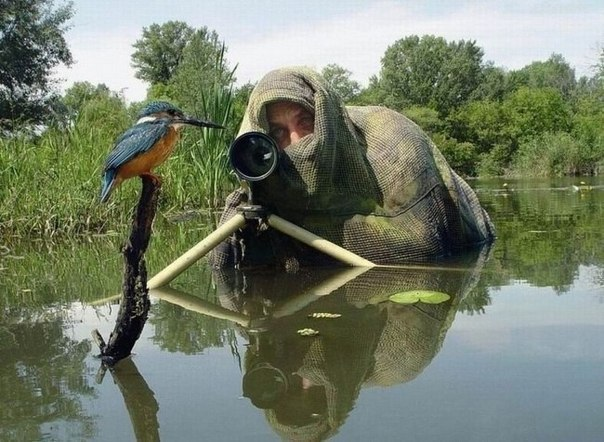 Суровые будни фотографа.Разглядывая превосходные фотографии в журналах и интернете, задумайтесь, ... - 8