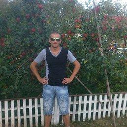 Сергей, 27 лет, Богуслав