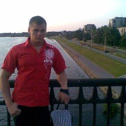 Nikita, 29 лет, Балашиха