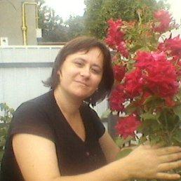 инна, 37 лет, Звенигородка