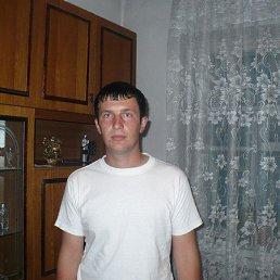 Каляныч, 29 лет, Сургут