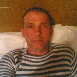 сергей, 56 лет, Курсавка
