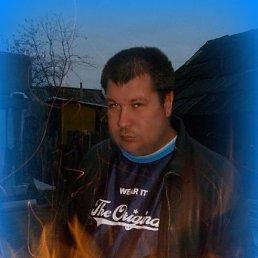 Николай, 43 года, Козьмодемьянск