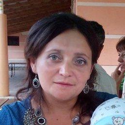 Марьяна, 36 лет, Берегово