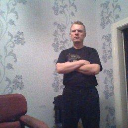 Геннадий, 46 лет, Камень-Каширский