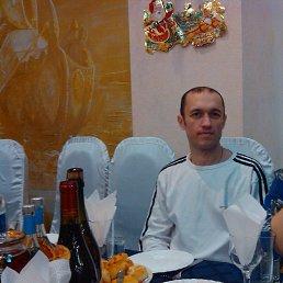 Фото Сергей, Сенной, 43 года - добавлено 29 декабря 2014