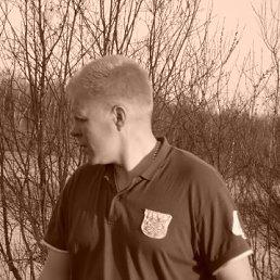 дмитрий, 43 года, Малая Вишера