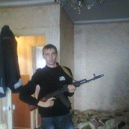 Сергей, 29 лет, Краснодон