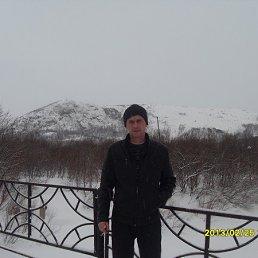 Александр, 43 года, Видяево